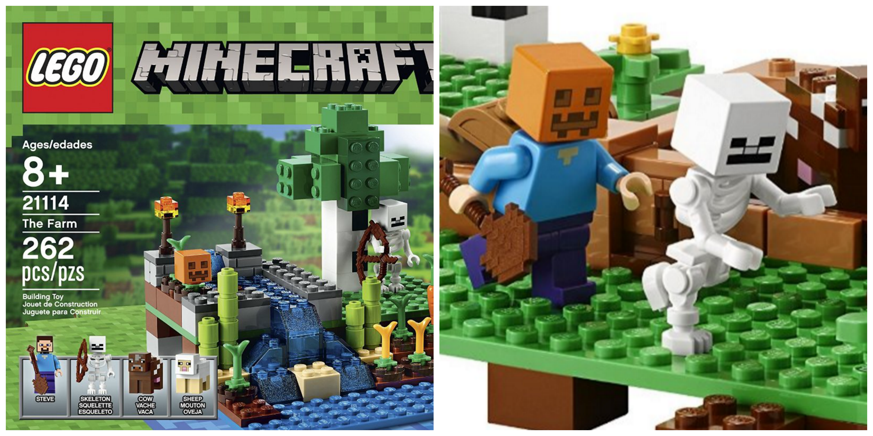What Food Can You Grow In Minecraft