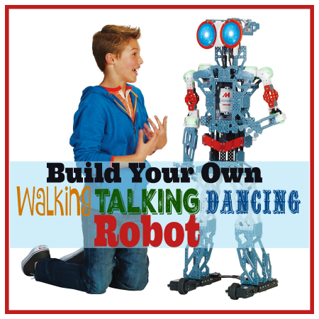 Build a Robot Kit! What Fun!